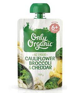 Only Organic: Cauliflower, Broccoli & Cheddar 120g (6+ Months) - 10% OFF!!