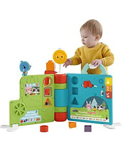 Fisher-Price: Sit-to-Stand Giant Activity Book (6-36 months) - 19% OFF!!