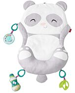 Fisher-Price: All-in-One Panda Playmat - 21% OFF!!